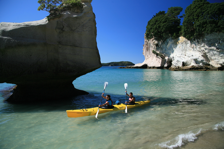 Cathedral Cove Seal Kakaying Tours Coromandel