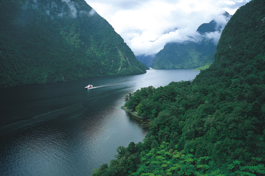 Doubtful Sound Small Boat Trip