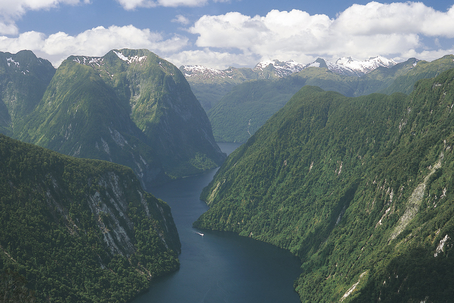 Doubtful Sound View