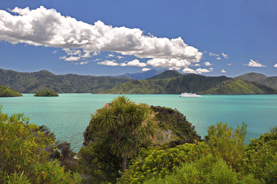Ferry Approaching Picton