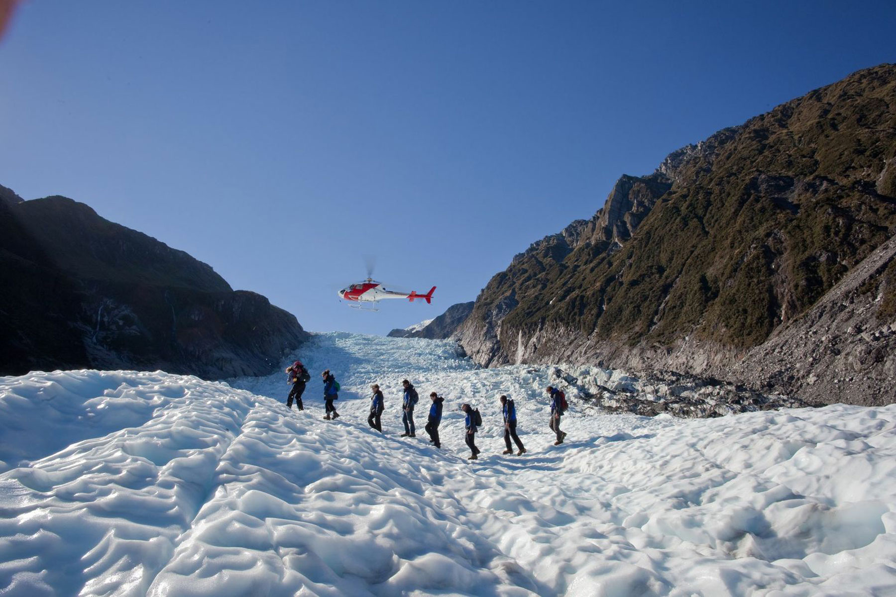 Fox Glacier Guided Walks large