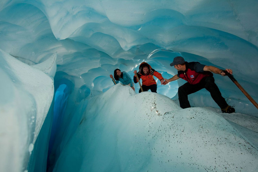 Fox Glacier Guided Walks