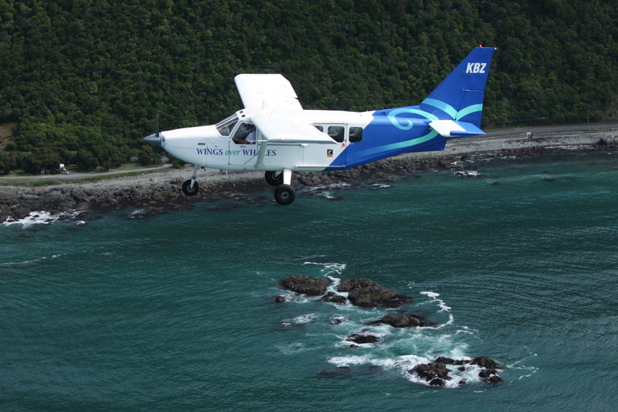 Kaikoura Whale Watch Flights