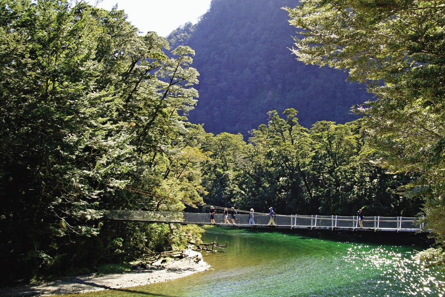 Milford Sound Guided Walks