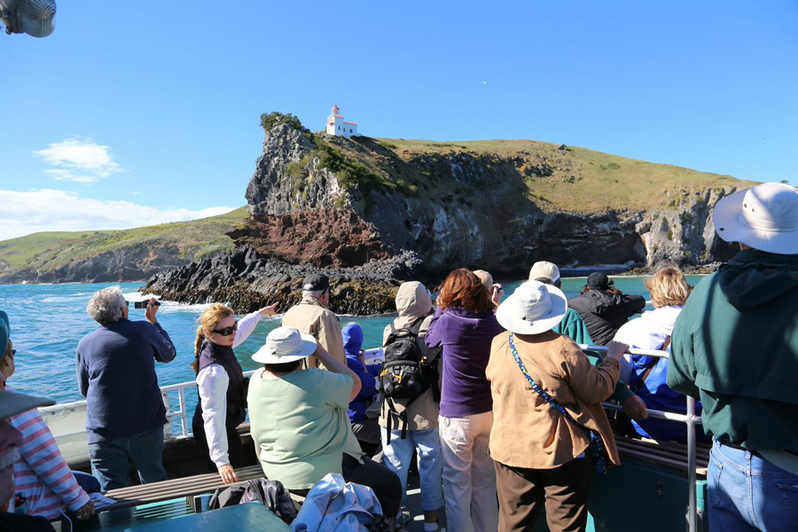 Monarch Wildlife Cruises Dunedin