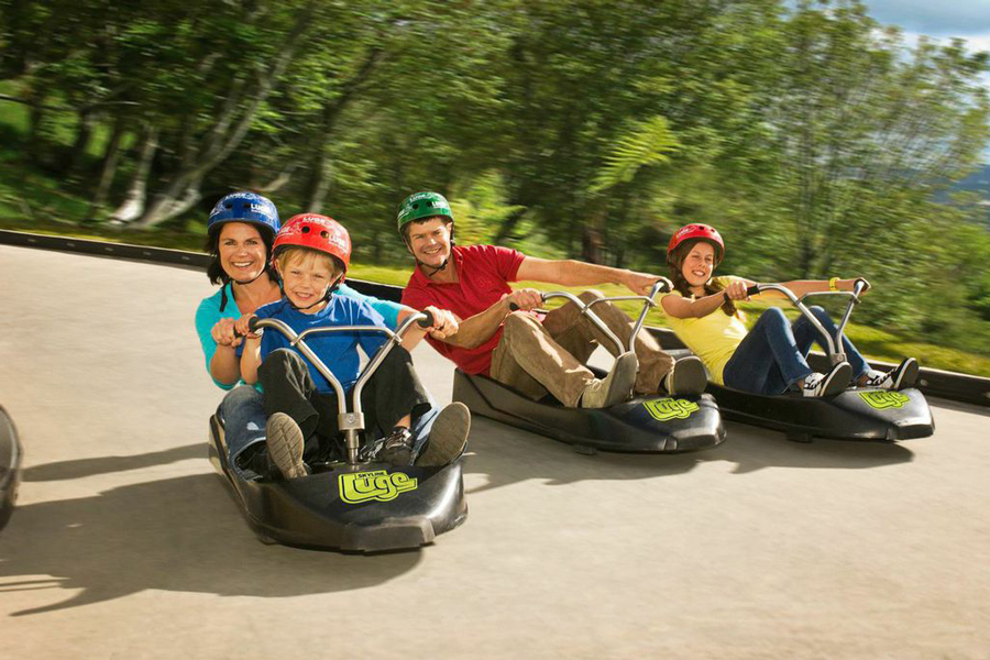 New Zealand Family Holiday Package | 10 Day North Island