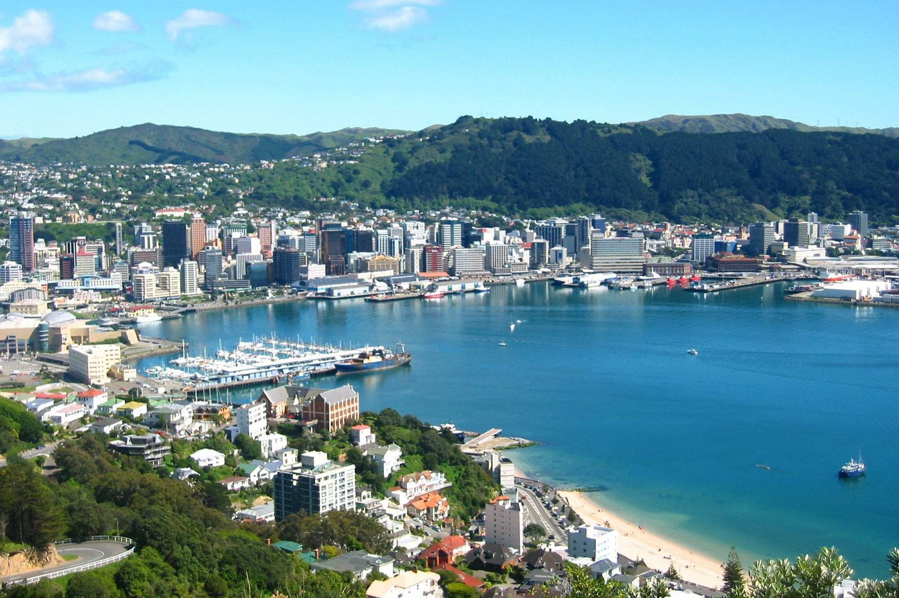 Wellington City large