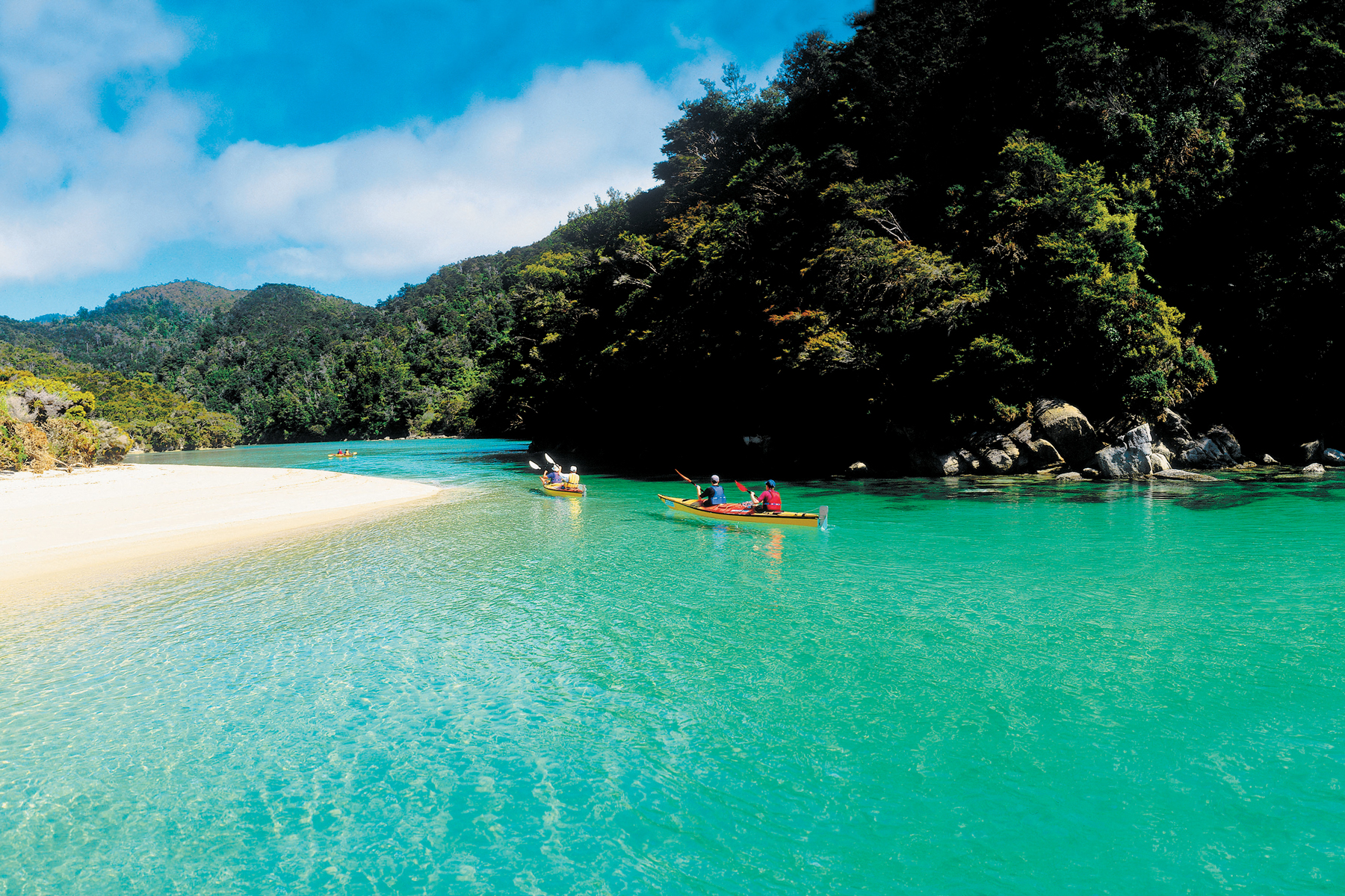 Abel Tasman Air Background