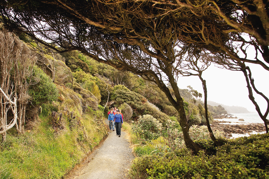Stewart Island Guided Walks