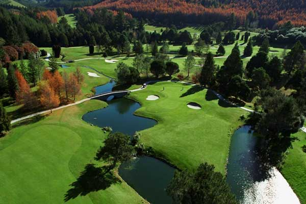 10 Day North Island Golf Package
