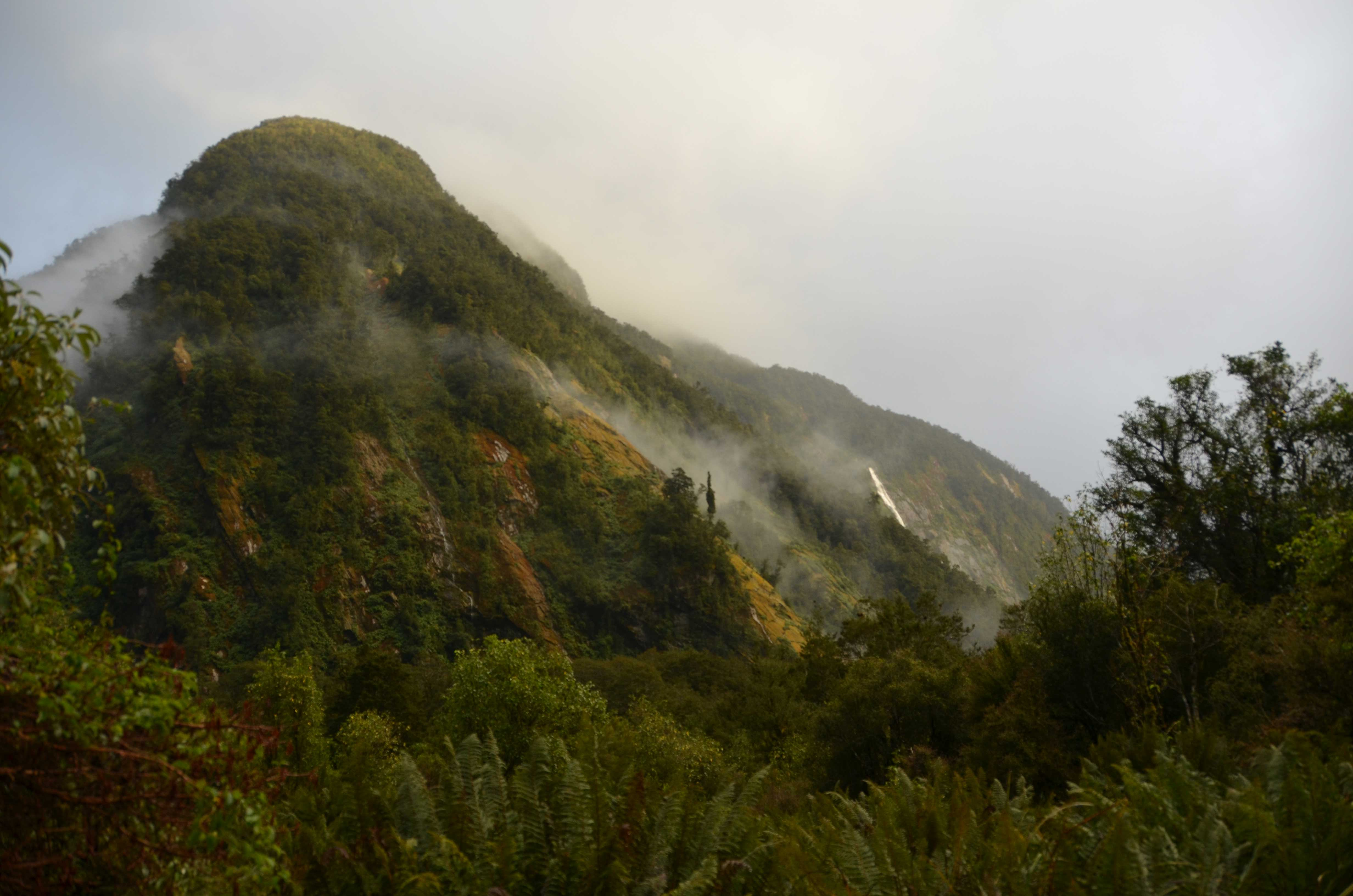 Fiordland National Park hiking