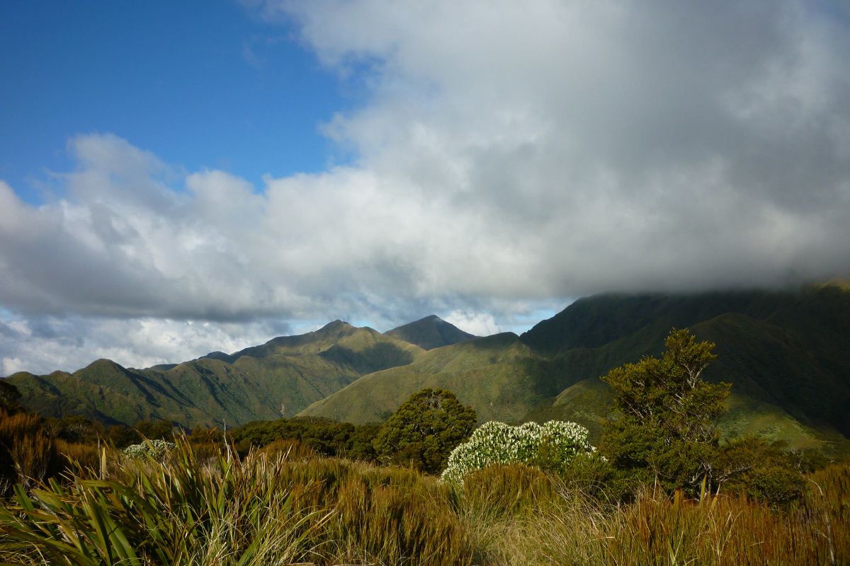 Hiking in the Tararua Range