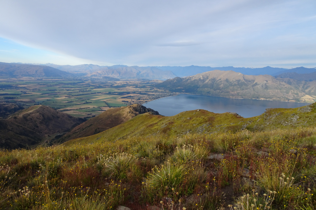 Looking over Lake Hawea and Wanaka from the Breast Hill Track