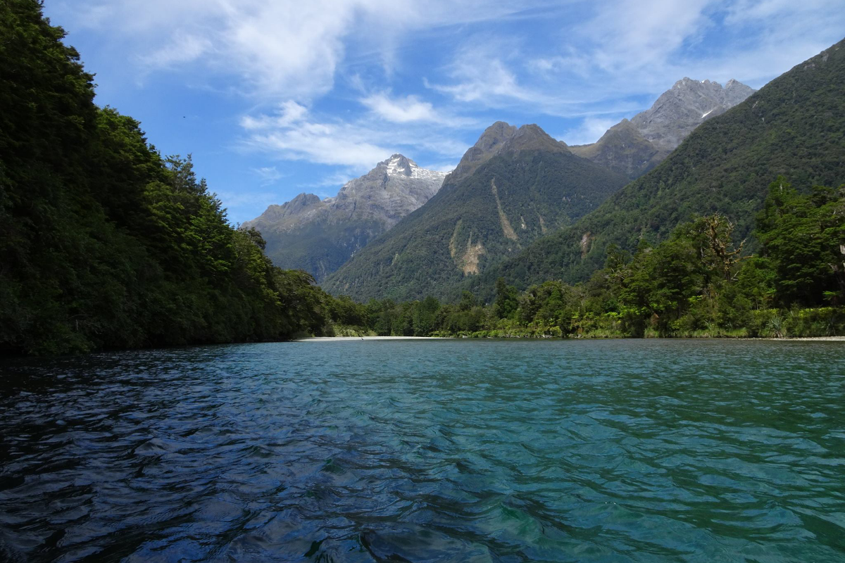 Hollyford Track, one of the best hikes in New Zealand