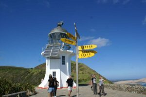 Cape Reinga New zealand guided tours