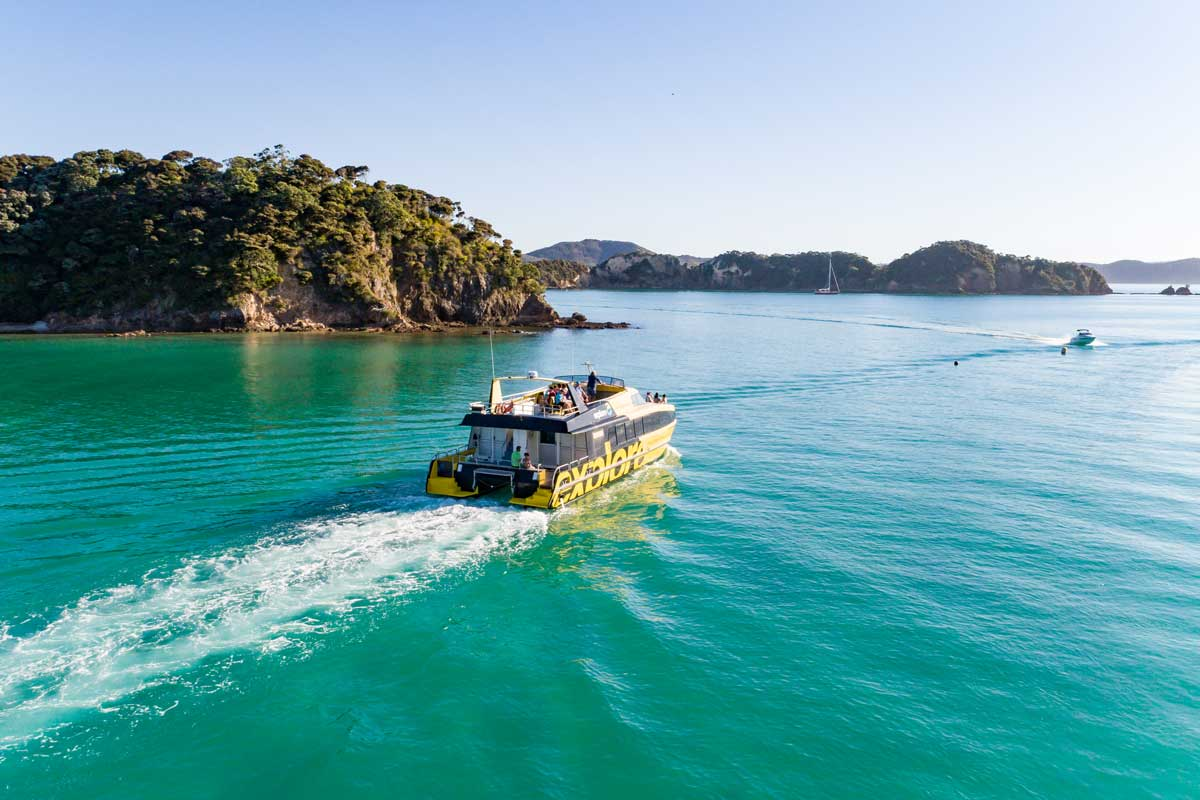 Discover the Bay Hole in the Rock Cruise | Explore NZ