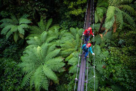 14 Day 100% Adrenaline South Island Holiday Package