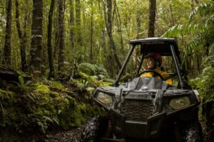 on yer bike greymouth New Zealand Family holiday packages