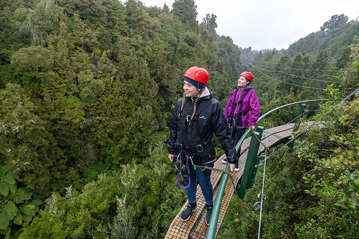 Rotorua Canopy Tours Book Here - NZ Travel Organiser