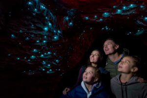 te anau glowworm caves New Zealand itinerary 3 weeks