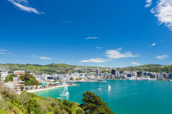 wellington New Zealand travel packages